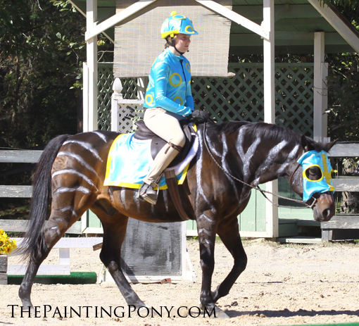 10 halloween horse show costume ideas you ll love   the