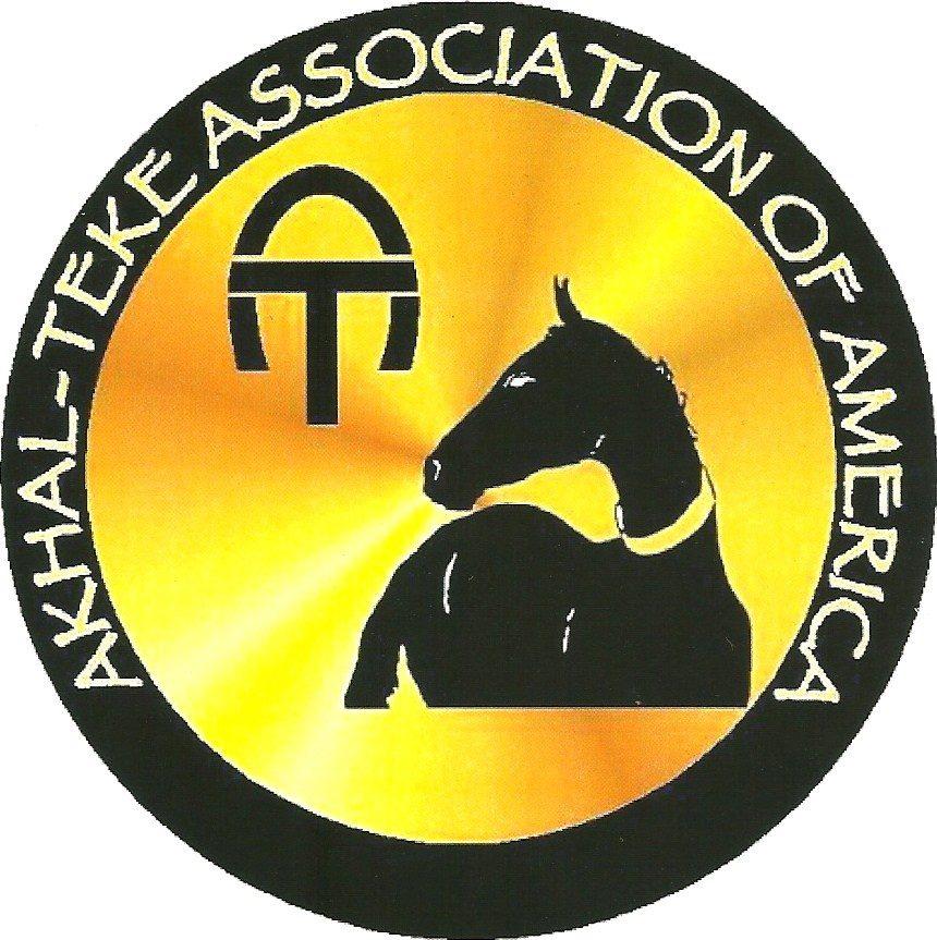 american-akhal-teke-association.jpg