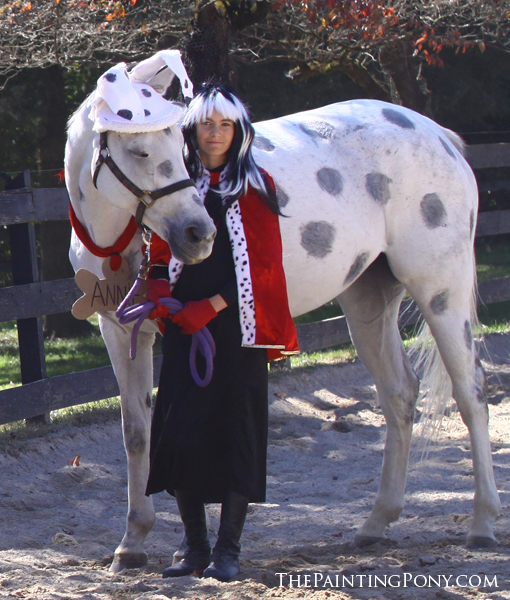 101 Dalmatians & 10+ Halloween Horse Show Costume Ideas Youu0027ll Love - The Painting Pony